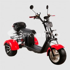 Электроскутер CityCoco SkyBoard Trike BR60-3000 PRO